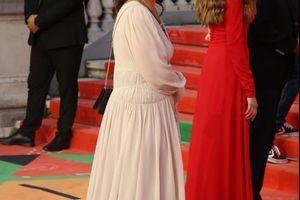 Nataša Ninković sinoć u Sarajevu pokazala da je PRAVA FILMSKA DIVA: Na crveni tepih zakoračila u HOLIVUDSKOM STILU, a haljina na njoj je BRUTALNA!